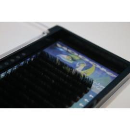 Ciglia MODOMI 16 lines Mix Black 0.15 D 6-12mm. Exclusive Lashes